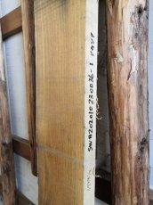 画像4: ≪未加工≫無垢一枚板 アカシア  W1850×D185~210×t40 (4)