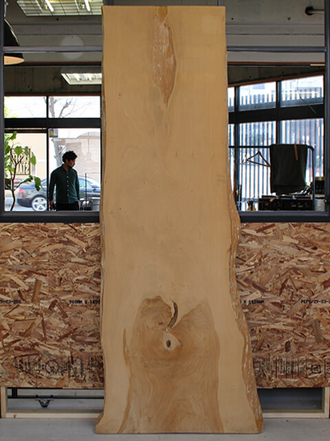 イチョウ,無垢板,一枚板,テーブル天板,大阪