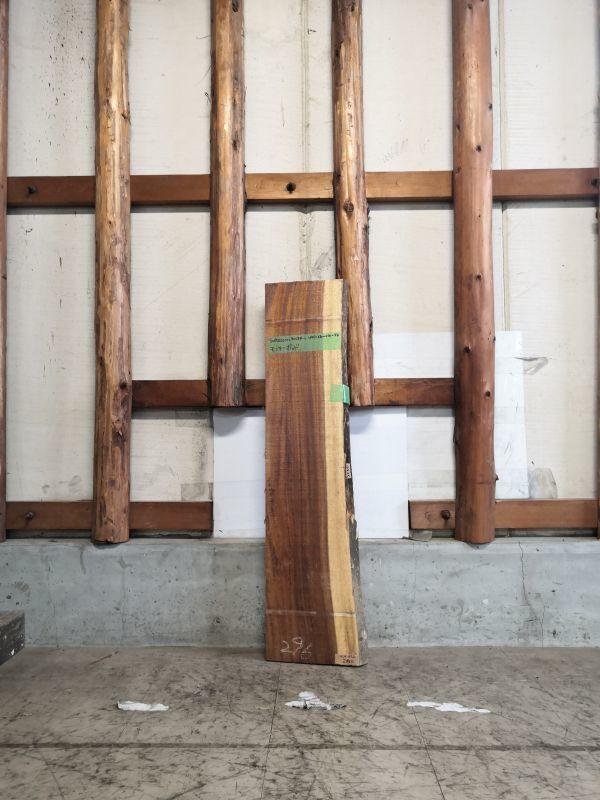 画像1: ≪未乾燥≫無垢一枚板 モンキーポッド  W1045×D230~270×t34 (1)